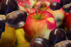 castagni è meli